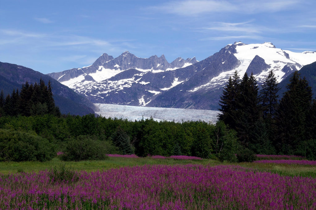 mendenhall glacier tour
