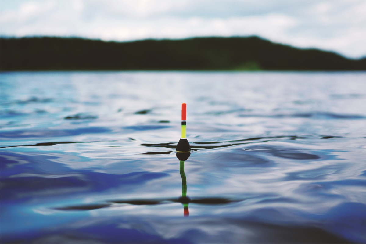 Fishing Paradise: Juneau Caters to Both Saltwater and Freshwater Anglers