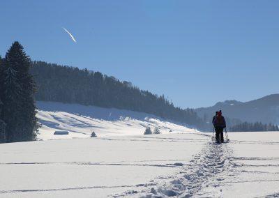 snowshoe near juneau