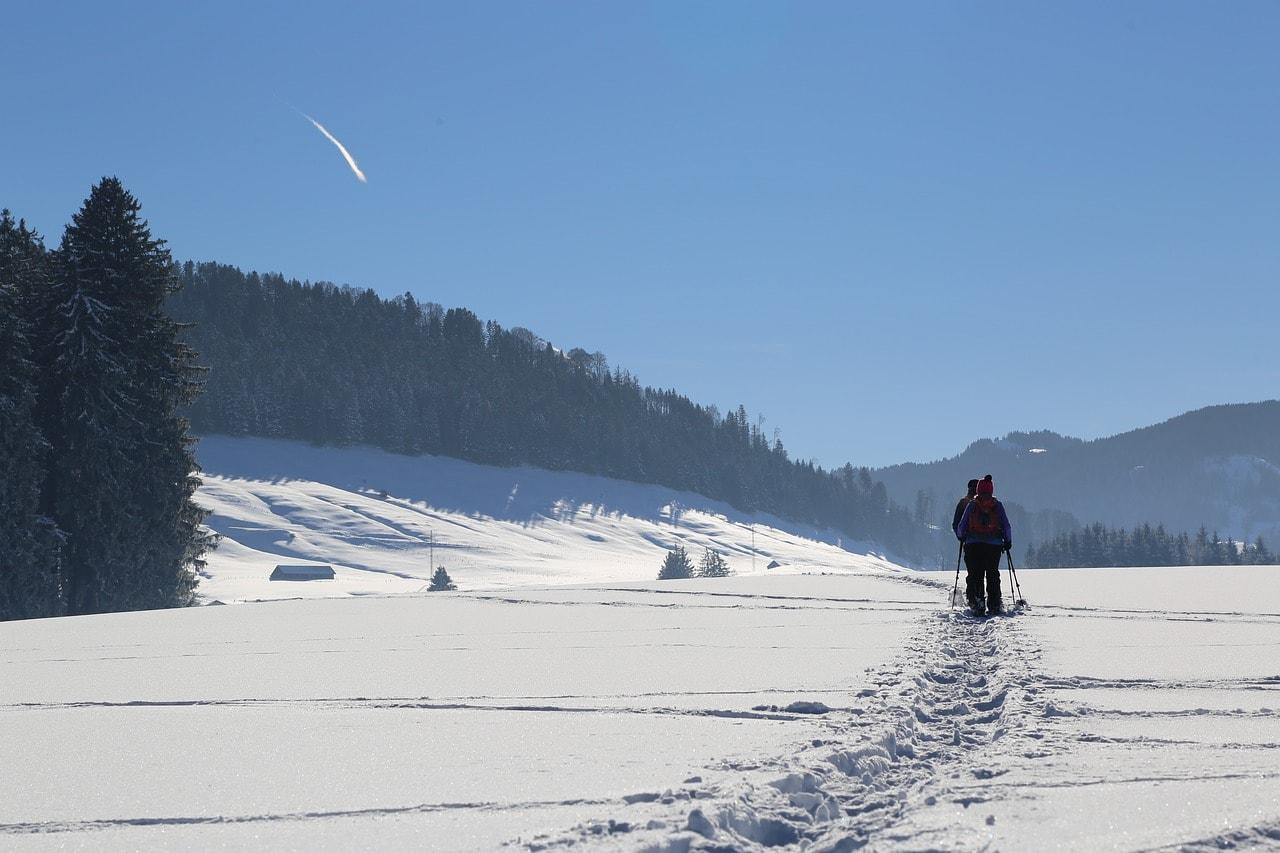 Snowshoeing Near Juneau