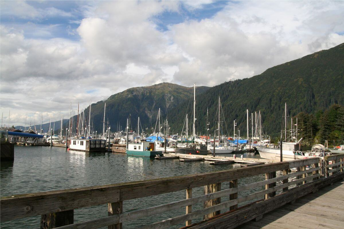 Start Booking Your Summer Juneau Vacation and Save