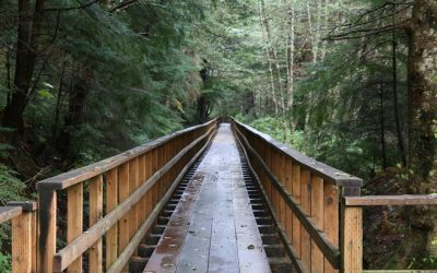 Juneau Airport Hotels Put You Closer to Great Hiking and Running Trails